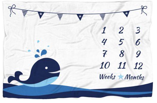 cropped-whale-blanket-3500x3000_b07f4rbgx4.jpg